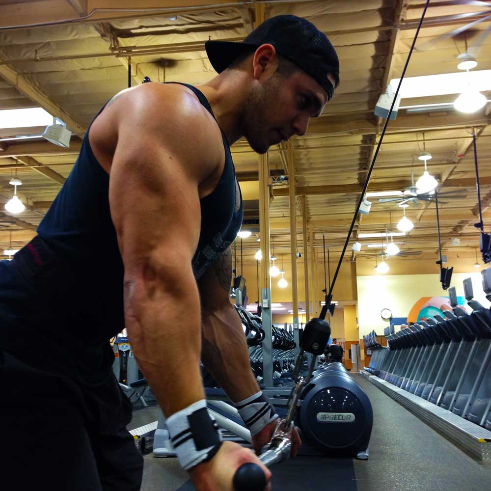 Reverse grip triceps pull downs bottom position