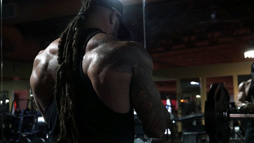 Triceps and biceps super set workout