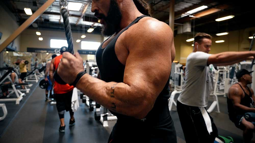 arm workout triceps