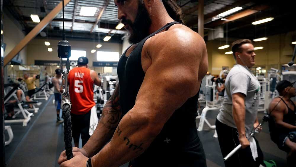 arm workout for triceps