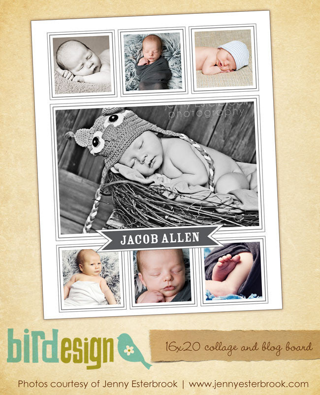 16x20 collage & blog board | Babies - e467