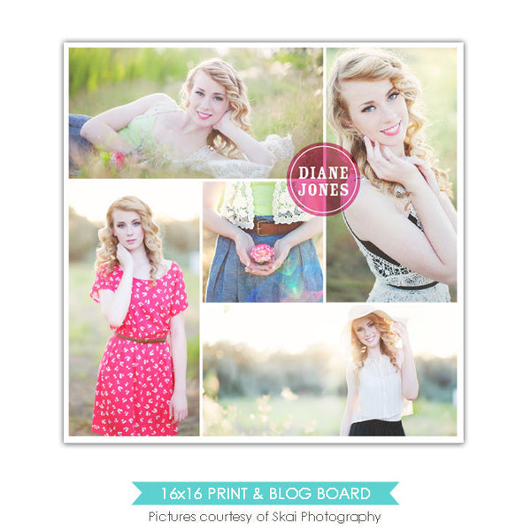 16x16 collage & blog board | Chic circle e826