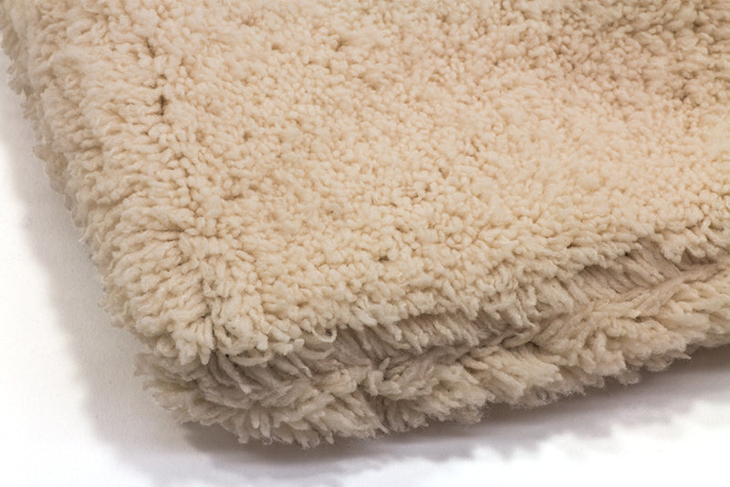 Plush Microfiber Car Wash Mitt