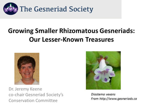 Webinar: Growing Smaller Rhizomatous Gesneriads - Our Lesser-Known Treasures (streaming)