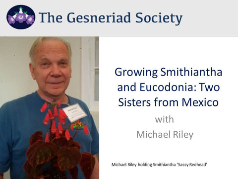 Webinar: Growing Smithiantha and Eucodonia (streaming)