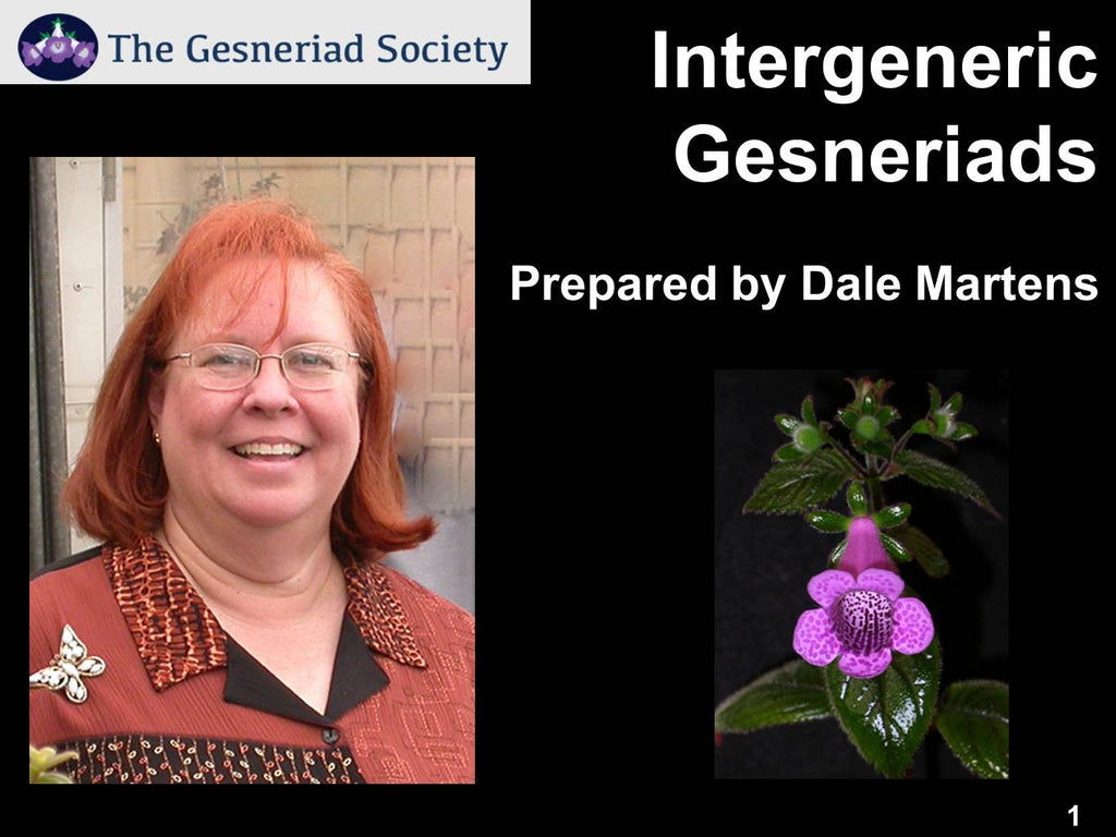 Webinar: Intergeneric Gesneriads with Dale Martens