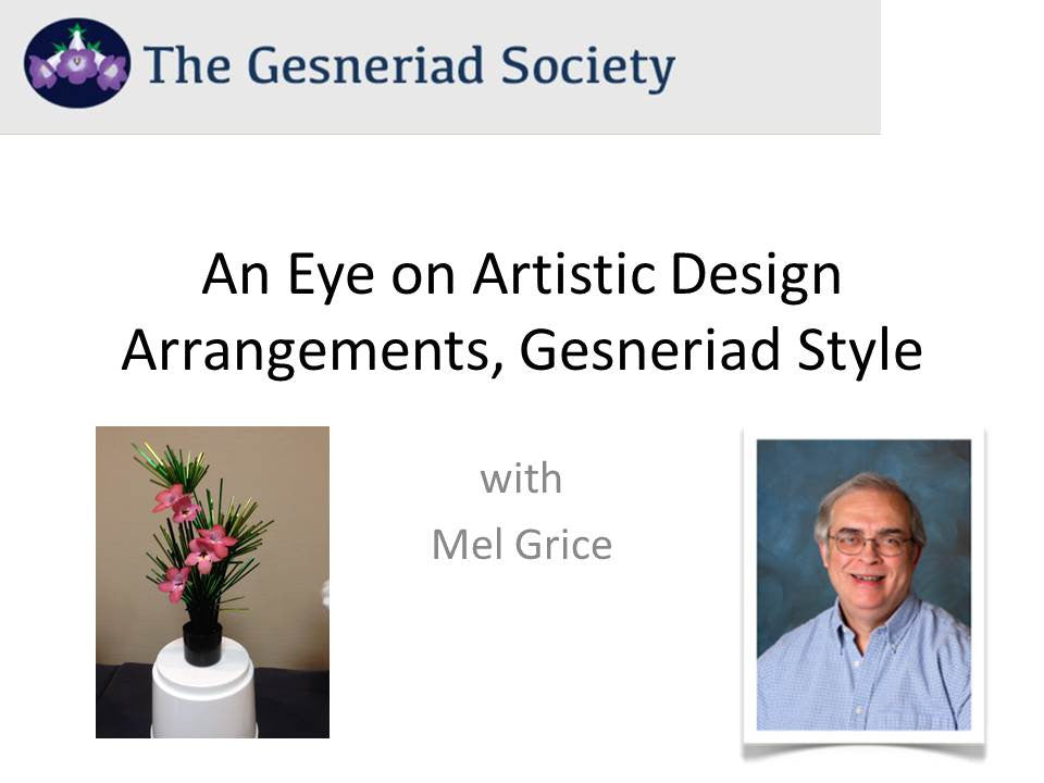 Webinar: An Eye on Artistic Design Arrangements, Gesneriad Style (streaming)