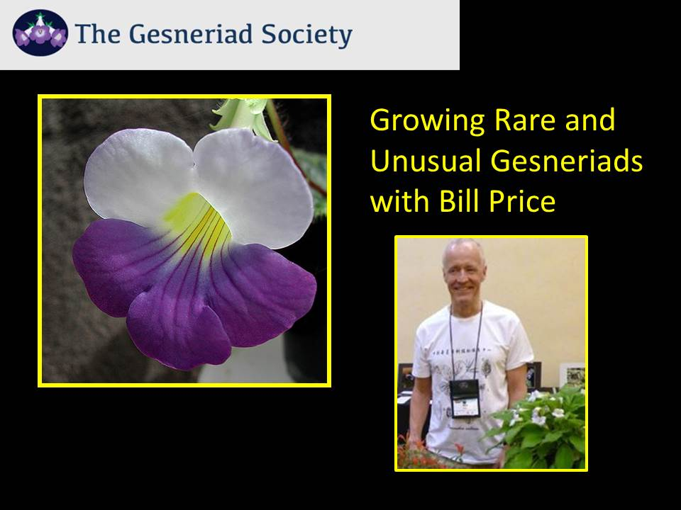 Webinar: Growing Rare and Unusual Gesneriads