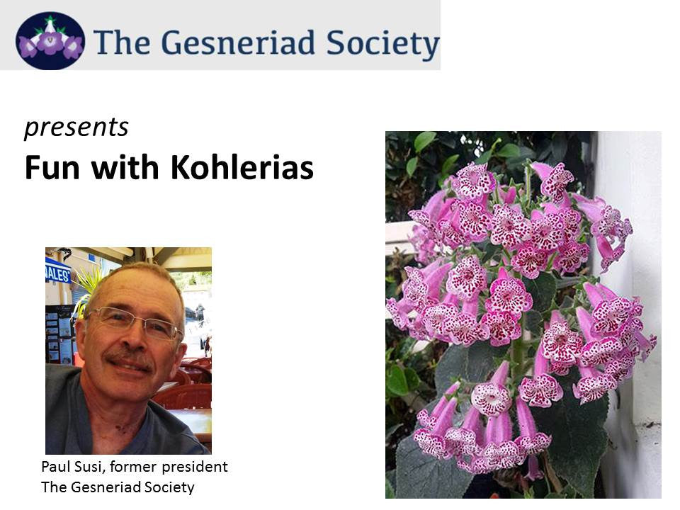 Webinar: Fun with Kohlerias
