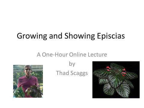 Webinar: Growing and Showing Episcias (Download)