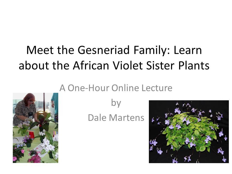 Webinar: Meet the Gesneriad Family (Live)