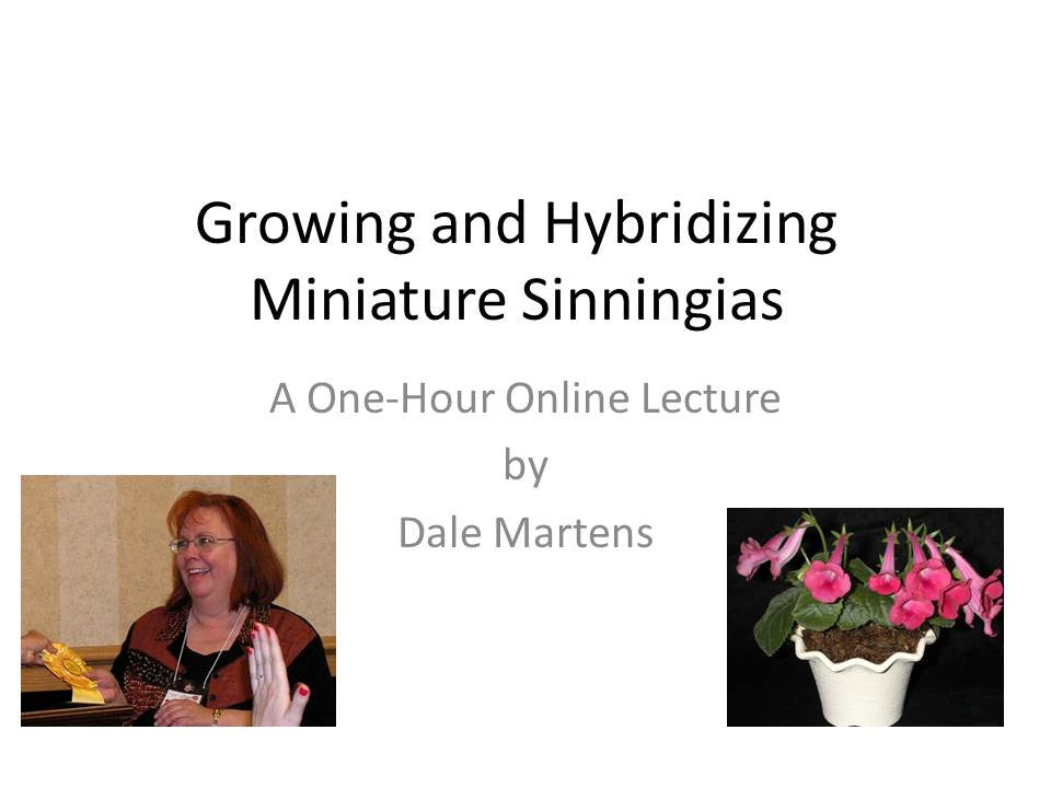 Webinar: Growing and Hybridizing Miniature Sinningias (Download)
