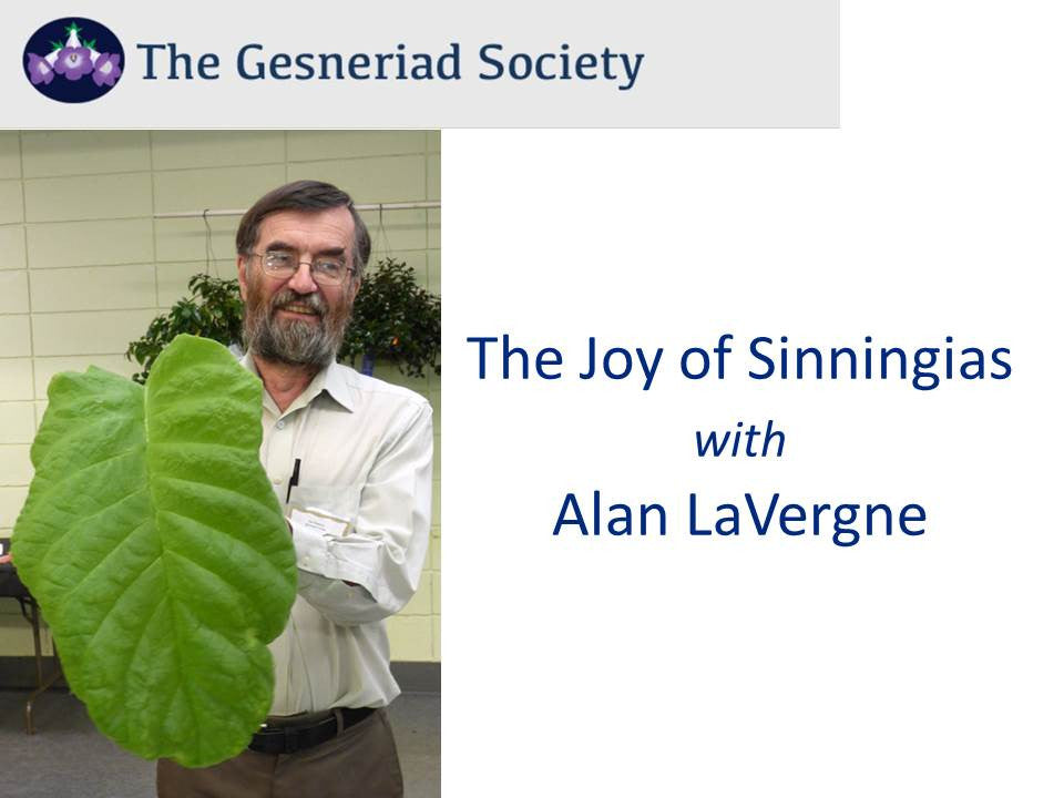 Webinar: Joy of Sinningias (Download)