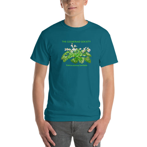 Men T-Shirt with printed Petrocosmea barbata