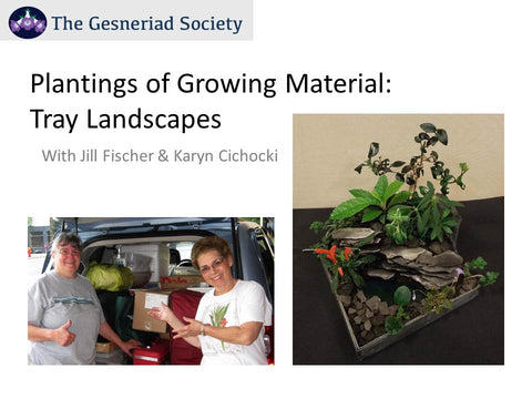 Webinar: Plantings of Growing Material - Tray Landscapes