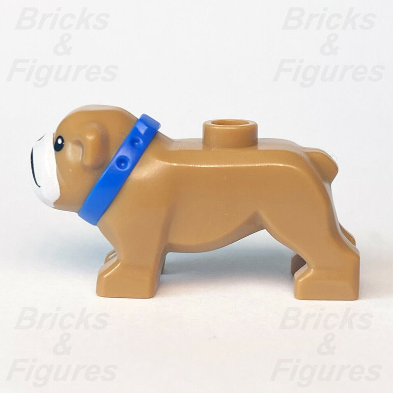 New Town & City LEGO Light Brown Bulldog Dog with Blue Collar Animal Part 60258