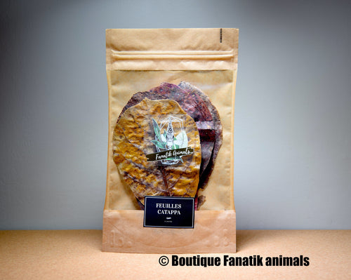 Feuilles de Catappa Fanatik animals