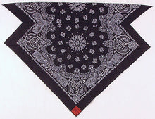 Load image into Gallery viewer, Black Paisley Skulldana®