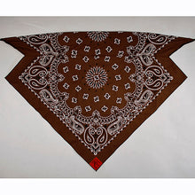Load image into Gallery viewer, Chocolate Brown Paisley Skulldana®