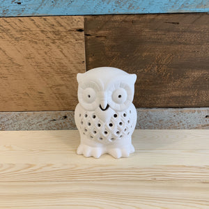 Nightlight Owl