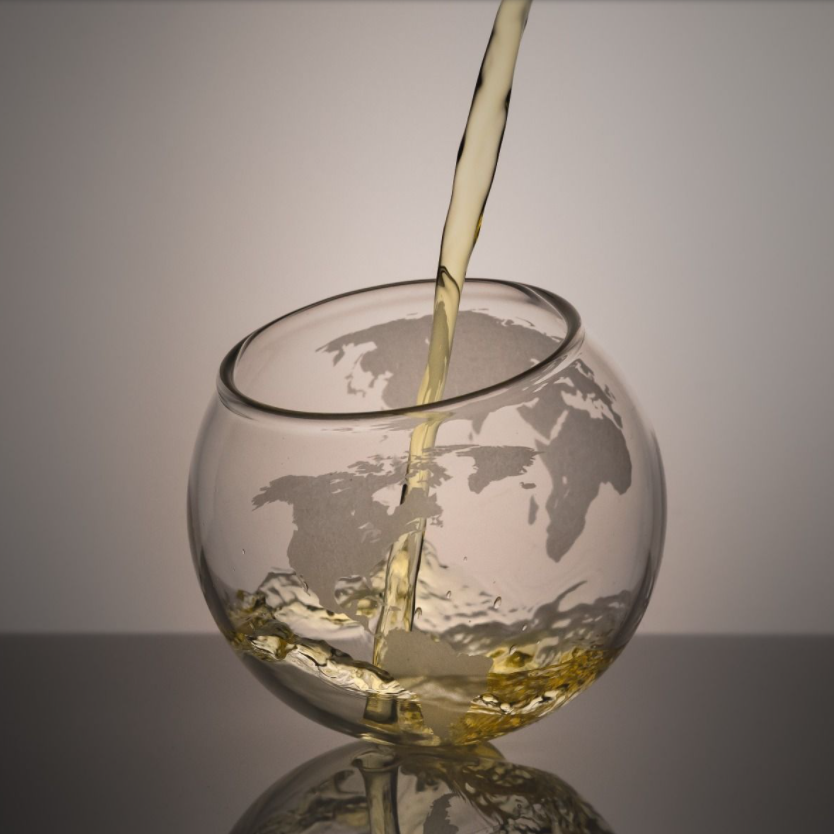 Spinning World Whiskey Glasses