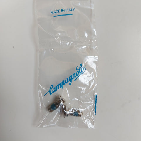 Campagnolo Disc Caliper Rear Adapter Screws 140mm to 160mm EC-DB013