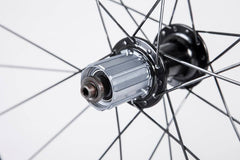 BORG50C Carbon Clinchers Tubeless ready with Carbon Ti hubs 20F/24R 26.2mm wide