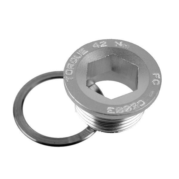 Campagnolo Power Torque crank fixing bolt FC-CE003