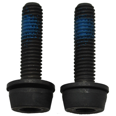 Campagnolo rear caliper mounting screws