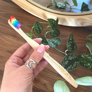 The Future is Bamboo Toothbrush - Adult Rainbow