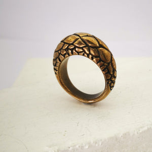 x  Tuatara ring in solid bronze by The Wild. Tapered and textured with tuatara scales.