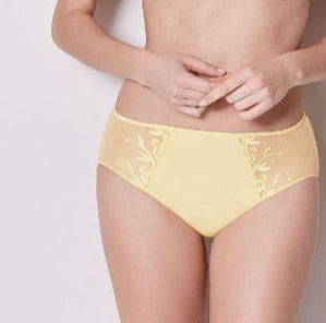 Andora Retro Brief