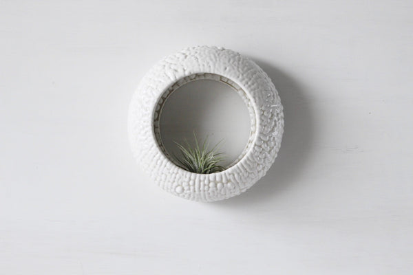 Large O-planter in White Bead. Terrarium, rustic home decor, air plant, hanging contemporary planter.