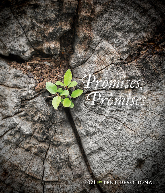 Promises, Promises | 2021 Lent Devotional