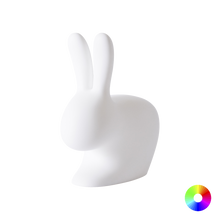 Load image into Gallery viewer, QEEBOO | Rabbit Lamp With Rechargeable LED - Small