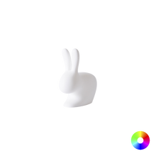 Load image into Gallery viewer, QEEBOO | Rabbit Lamp With Rechargeable LED - XS