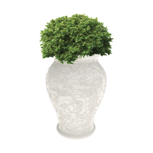 Load image into Gallery viewer, QEEBOO | Ming Vase / Planter (Black & White Available)