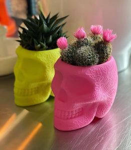 QEEBOO | Mexico XS - Pen Holder & Planter - (Multiple Finishes Available)