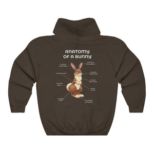 Anatomy of a Rabbit - Brown