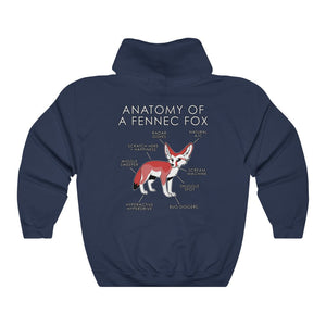 Anatomy of a Fennec (Red)