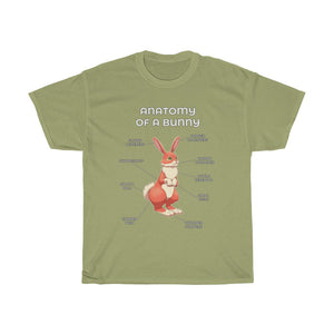 Anatomy of a Rabbit - Red