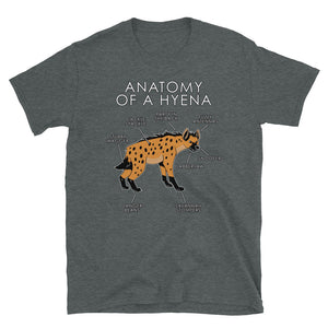 Anatomy of a hyena (Orange)