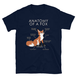 Anatomy of a Fox (Orange)
