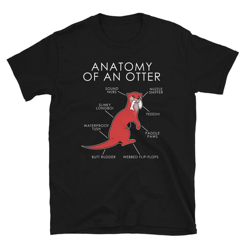 Anatomy of an otter (Red)