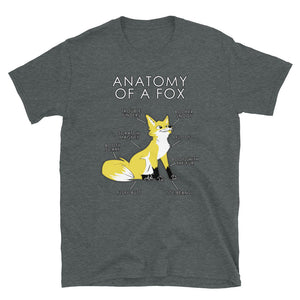 Anatomy of a Fox (Yellow)