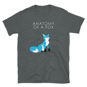 Anatomyy of a Fox (Light Blue)