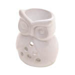 Charming Owl Oil Warmer Air Fresheners - AttractionOil.com