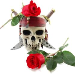 Men's Skull & Rose Scented Pheromone Oil Men's Pheromone - AttractionOil.com