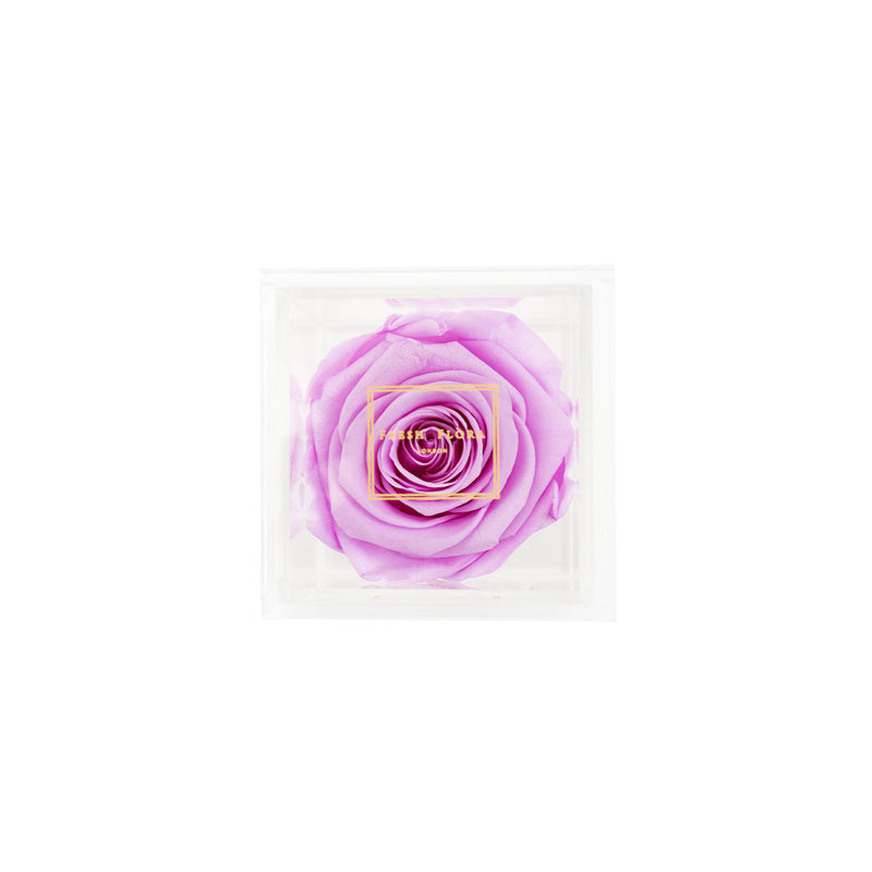 Single Perspex Box - Fresh Flora London