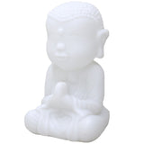 Color Changing LED Buddha Light